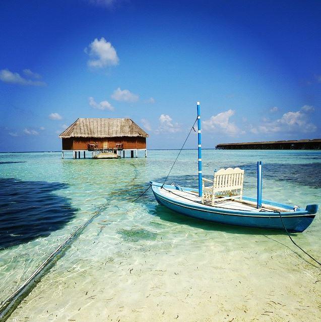 Tim Maldives