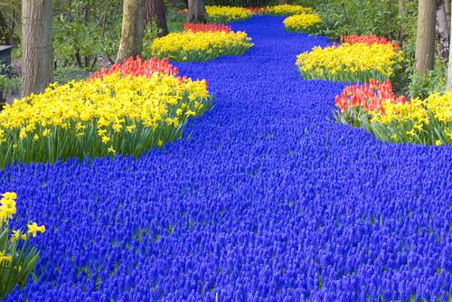 Blue Path, Keuenhof, Netherlands