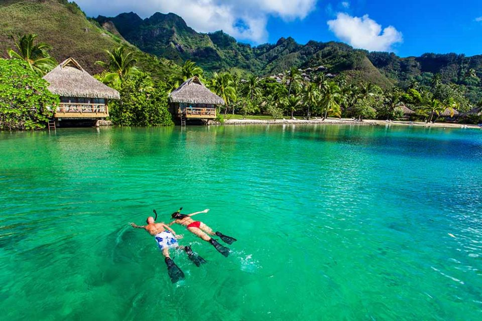 Couple snorkelling together in a tropical location