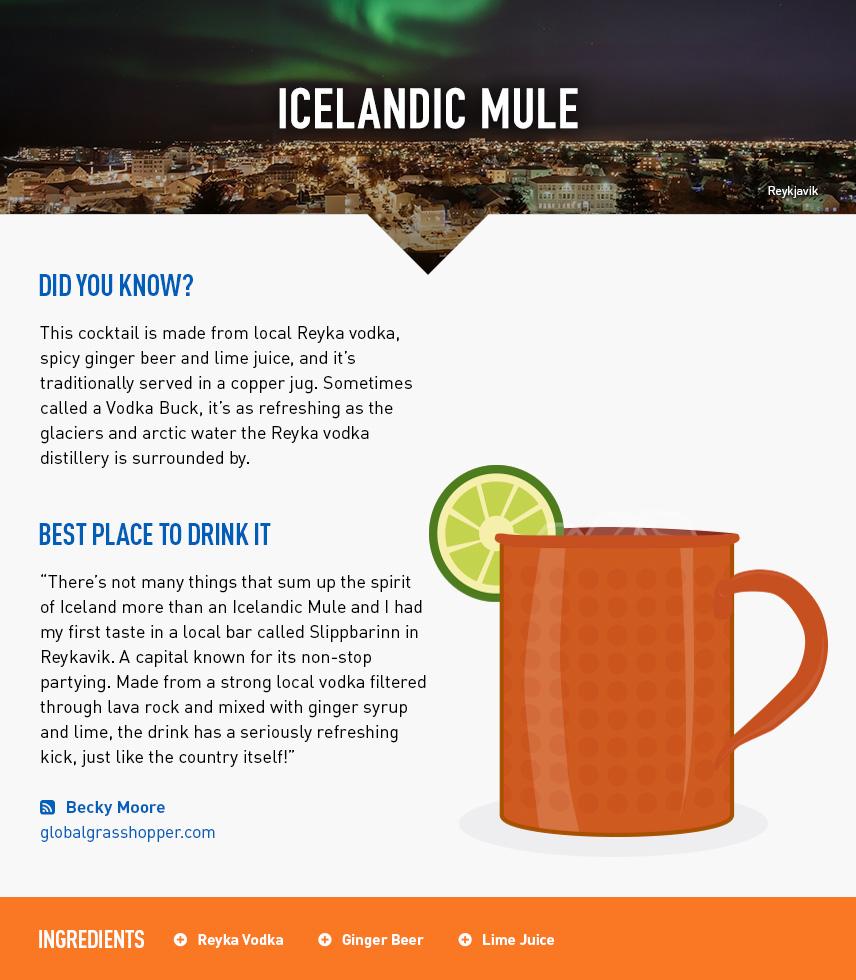 Icelandic Mule - Reykjavik City Break - Iceland