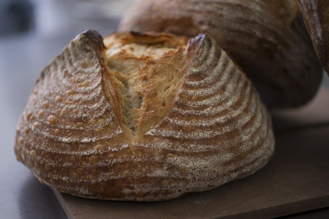 Sourdough loaves freshly baked.